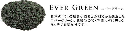 EVER GREEN エバーグリーン